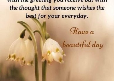 Amazing collection of Good Morning Quotes Images and Messages - Good Morning Images, Quotes, Wishes, Messages, greetings & eCard Images