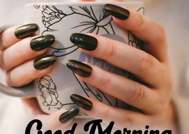 Best Good Morning Quotes Images for you - Good Morning Images, Quotes, Wishes, Messages, greetings & eCard Images