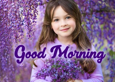 Best Good Morning flowers Images for WhatsApp and Facebook - Good Morning Images, Quotes, Wishes, Messages, greetings & eCard Images