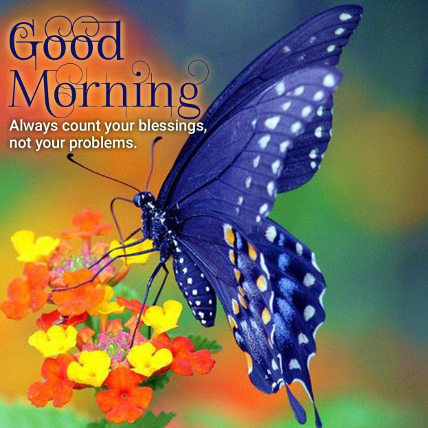 Download Beautiful Good Morning Quotes Images - Good Morning Images, Quotes, Wishes, Messages, greetings & eCard Images