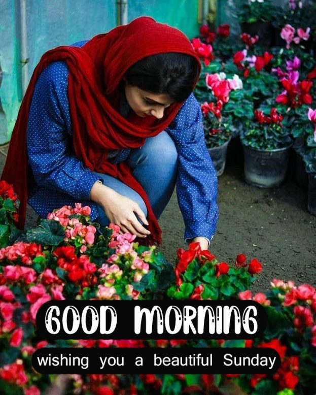 Good Morning Wishing You A Beautiful Sunday Images - Good Morning Images, Quotes, Wishes, Messages, greetings & eCard Images