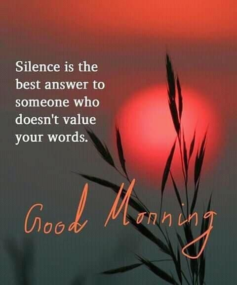 Huge stock of Lovely and Cute Good Morning Quotes Images for you - Good Morning Images, Quotes, Wishes, Messages, greetings & eCard Images