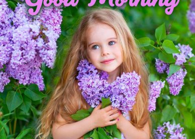 Make your partner's morning lovely with Good Morning flowers Images