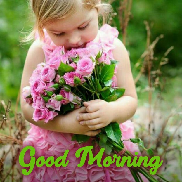 Send beautiful Good Morning messages with Flowers Images - Good Morning Images, Quotes, Wishes, Messages, greetings & eCard Images