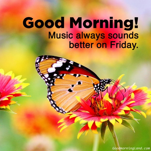 Appreciate your friends by sharing Good morning Friday images with them - Good Morning Images, Quotes, Wishes, Messages, greetings & eCard Images