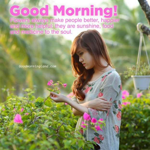 Awesome and Good morning flowers with images - Good Morning Images, Quotes, Wishes, Messages, greetings & eCard Images