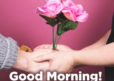 Awesome and Good morning love quotes - Good Morning Images, Quotes, Wishes, Messages, greetings & eCard Images
