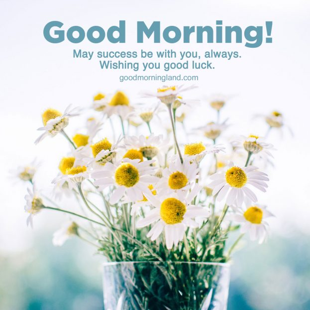 Awesome and Good morning wishes and images - Good Morning Images, Quotes, Wishes, Messages, greetings & eCard Images