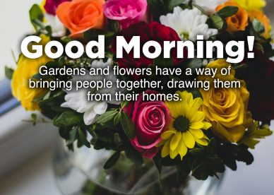 Beautiful and Amazing Good morning flowers with images - Good Morning Images, Quotes, Wishes, Messages, greetings & eCard Images