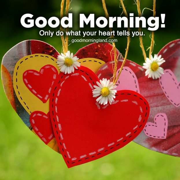 Beautiful hearts images for a beautiful person - Good Morning Images, Quotes, Wishes, Messages, greetings & eCard Images