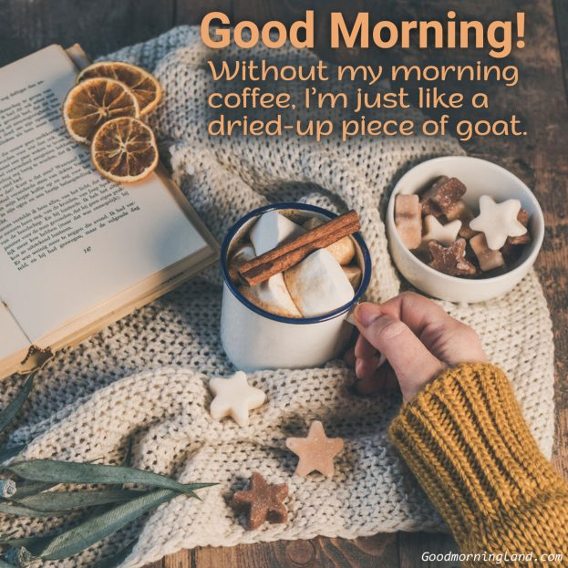 Best collection of good morning coffee images - Good Morning Images, Quotes, Wishes, Messages, greetings & eCard Images