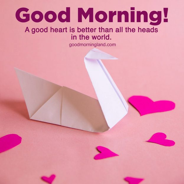 Brighten up the mornings by sending Good Morning Hearts Images - Good Morning Images, Quotes, Wishes, Messages, greetings & eCard Images