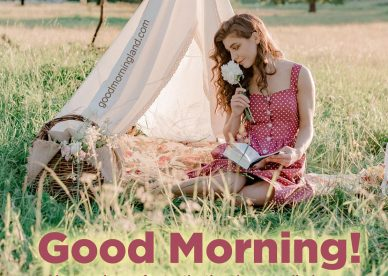Brighten up the mornings by sending Good Morning message Images 2021 - Good Morning Images, Quotes, Wishes, Messages, greetings & eCard Images