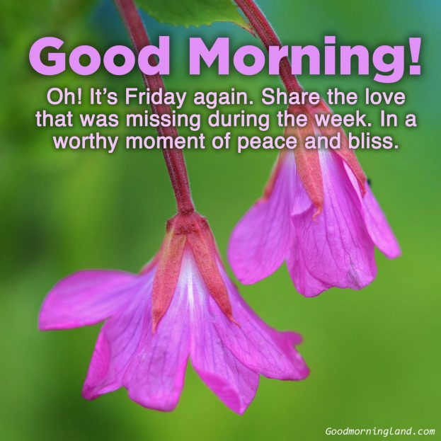 Brighten up your friends Friday with Good morning Friday images - Good Morning Images, Quotes, Wishes, Messages, greetings & eCard Images