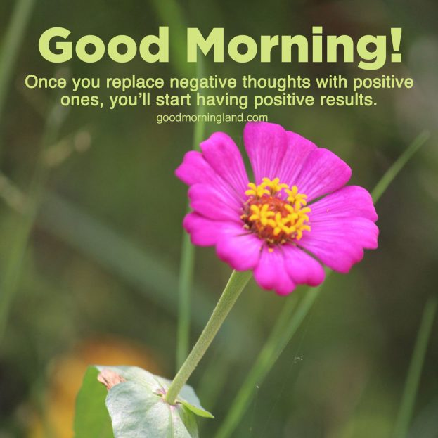 Cheer your partner with some Good Morning message Images - Good Morning Images, Quotes, Wishes, Messages, greetings & eCard Images