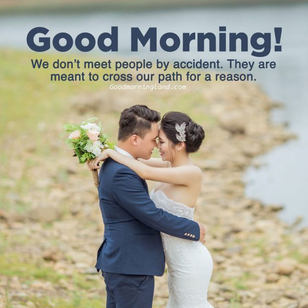 Download image of Good morning love quotes - Good Morning Images, Quotes, Wishes, Messages, greetings & eCard Images