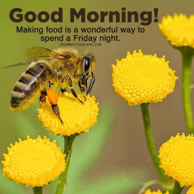 Download love Good morning Friday images - Good Morning Images, Quotes, Wishes, Messages, greetings & eCard Images