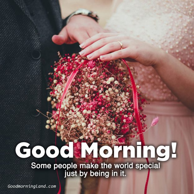 Download the most amazing Good Morning love flower Images - Good Morning Images, Quotes, Wishes, Messages, greetings & eCard Images