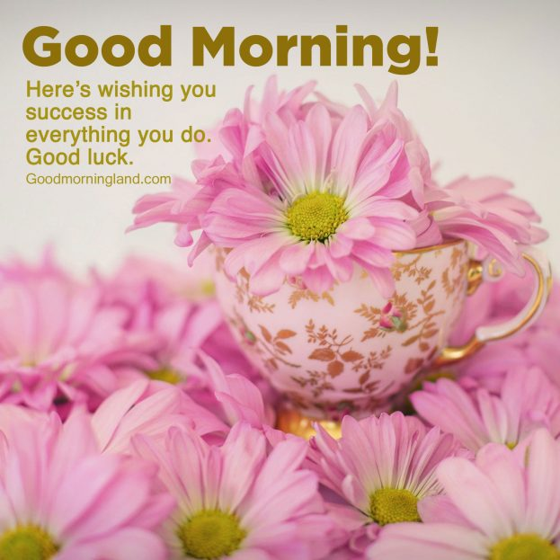 Free Good morning wishes with pictures - Good Morning Images, Quotes, Wishes, Messages, greetings & eCard Images