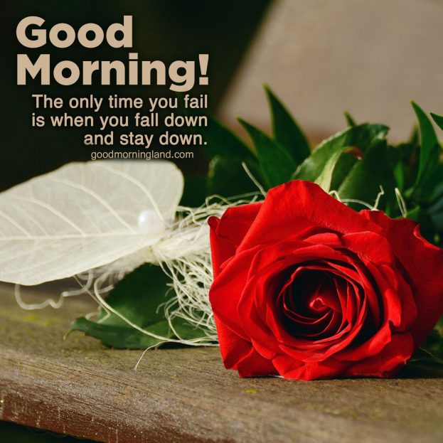 Get the best and unique Good Morning Message images 2020 - Good Morning Images, Quotes, Wishes, Messages, greetings & eCard Images