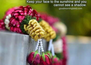 Good Morning message Images for husband and wife - Good Morning Images, Quotes, Wishes, Messages, greetings & eCard Images