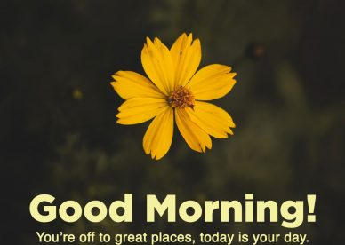 Good Morning message Images for your spouse - Good Morning Images, Quotes, Wishes, Messages, greetings & eCard Images