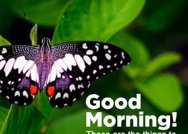 Lovely Day, love Good morning Friday images - Good Morning Images, Quotes, Wishes, Messages, greetings & eCard Images
