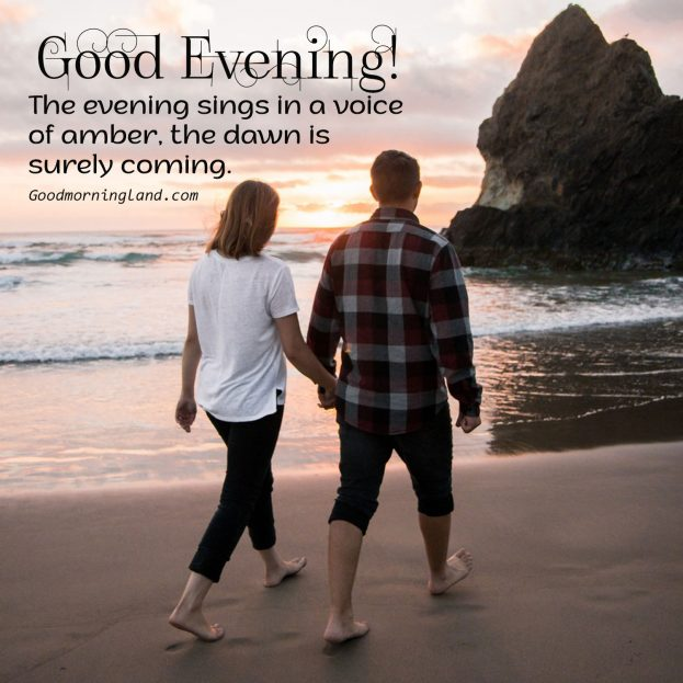 Lovely Good Evening Images for the lovely person 2021 - Good Morning Images, Quotes, Wishes, Messages, greetings & eCard Images