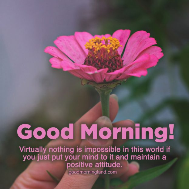 Lovely Good Morning Message Images for your boyfriend and girlfriend - Good Morning Images, Quotes, Wishes, Messages, greetings & eCard Images
