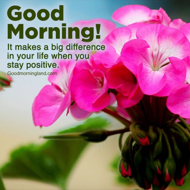 Lovely Good Morning message Images for your loved ones - Good Morning Images, Quotes, Wishes, Messages, greetings & eCard Images