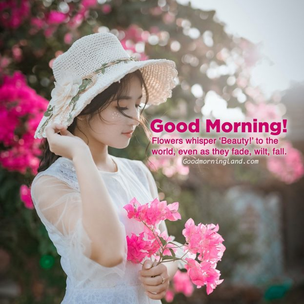 Lovely and Good morning flowers with images - Good Morning Images, Quotes, Wishes, Messages, greetings & eCard Images