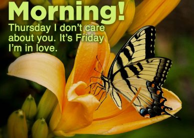 Make someone happy by sending Good morning Friday images - Good Morning Images, Quotes, Wishes, Messages, greetings & eCard Images