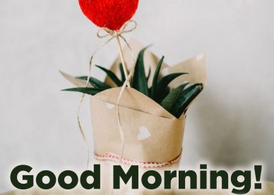 Make your lovers morning happy with hearts images - Good Morning Images, Quotes, Wishes, Messages, greetings & eCard Images