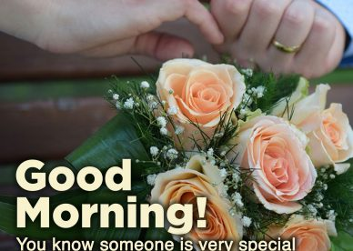 Most Downloaded and Good morning love quotes - Good Morning Images, Quotes, Wishes, Messages, greetings & eCard Images