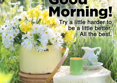 Most Downloaded and Good morning wishes and images - Good Morning Images, Quotes, Wishes, Messages, greetings & eCard Images