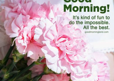 Most innovative Good morning wishes and images - Good Morning Images, Quotes, Wishes, Messages, greetings & eCard Images