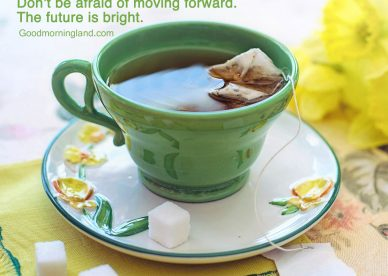 Most liked Good morning wishes and images - Good Morning Images, Quotes, Wishes, Messages, greetings & eCard Images