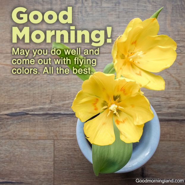 Recent collection of Good morning wishes and images - Good Morning Images, Quotes, Wishes, Messages, greetings & eCard Images