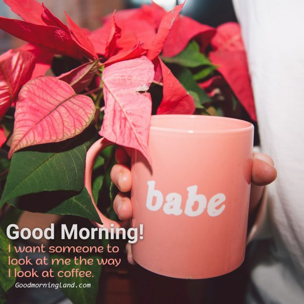 Share Cute and lovely good morning coffee images - Good Morning Images, Quotes, Wishes, Messages, greetings & eCard Images
