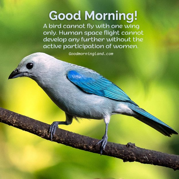Share Good Morning Birds Images with your loved ones - Good Morning Images, Quotes, Wishes, Messages, greetings & eCard Images