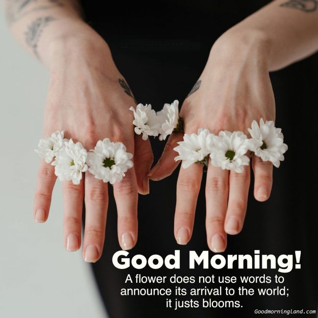 Top Good morning flowers with images - Good Morning Images, Quotes, Wishes, Messages, greetings & eCard Images