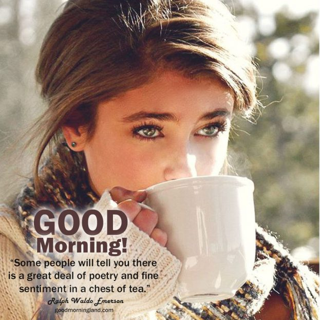 Beautiful and Amazing Good morning tea photos - Good Morning Images, Quotes, Wishes, Messages, greetings & eCard Images.