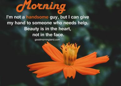 Cute Good morning handsome images 2021 - Good Morning Images, Quotes, Wishes, Messages, greetings & eCard Images.