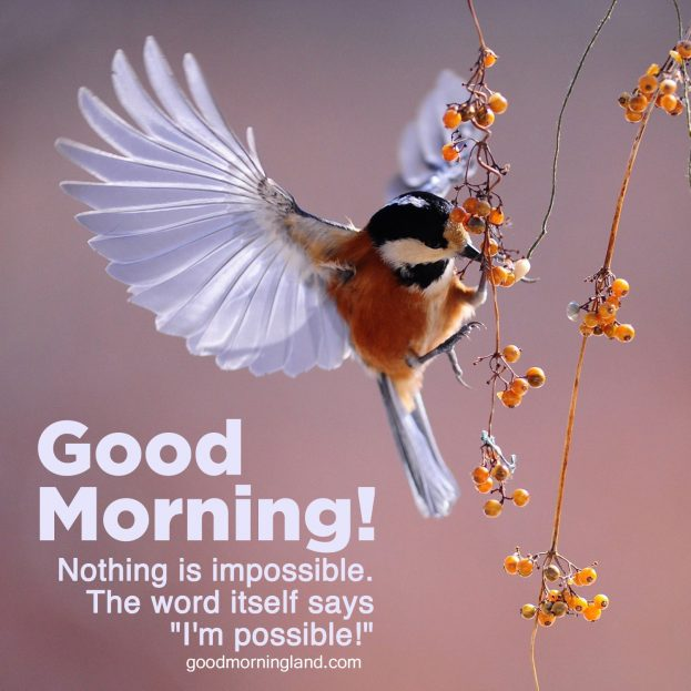 Download image of Good morning blessed quotes for him - Good Morning Images, Quotes, Wishes, Messages, greetings & eCard Images.