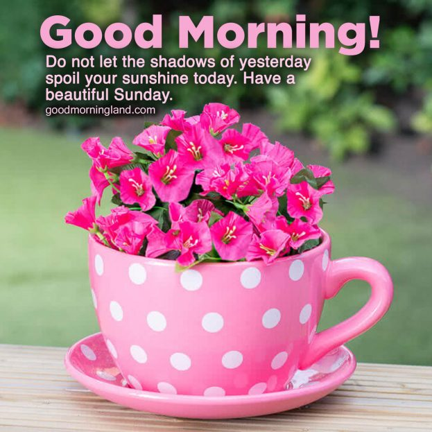 Lovely and Good morning Sunday morning images - Good Morning Images, Quotes, Wishes, Messages, greetings & eCard Images.