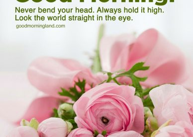 Most Downloaded and Good morning blessed quotes with wishes - Good Morning Images, Quotes, Wishes, Messages, greetings & eCard Images.