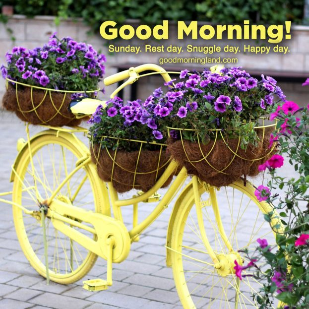 Most innovative Good morning Sunday morning pictures - Good Morning Images, Quotes, Wishes, Messages, greetings & eCard Images.