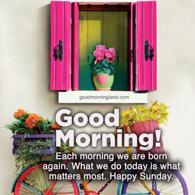 Most shared Good morning Sunday morning images - Good Morning Images, Quotes, Wishes, Messages, greetings & eCard Images.