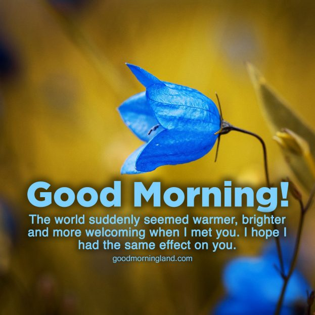 Recent collection of Good morning blessed quotes images - Good Morning Images, Quotes, Wishes, Messages, greetings & eCard Images.