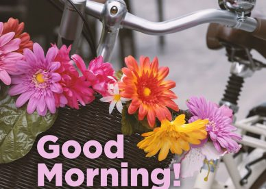 Spread and share Good morning greeting quotes pictures - Good Morning Images, Quotes, Wishes, Messages, greetings & eCard Images.